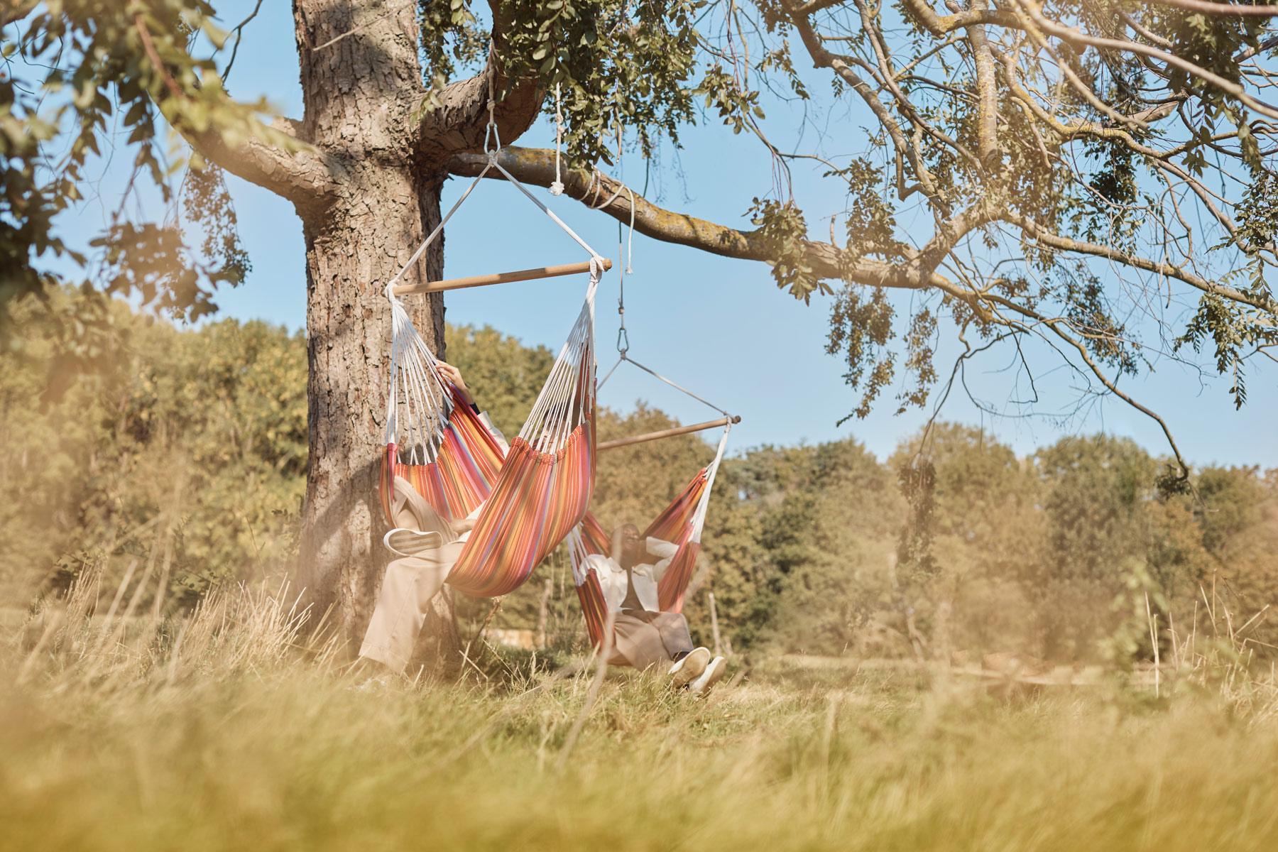 Birch_Hammocks-Landscape_1800-x-1200_02