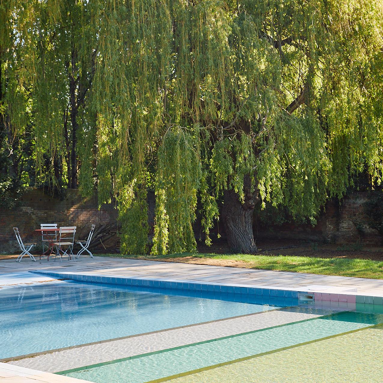Lido willows